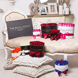 The Royal Roses® Boxen Flower Box